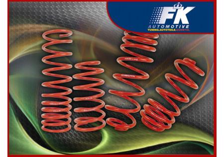 molle assetto Seat Toledo 5P asse anteriore/posteriore ca. 40 mm bis 1110 KG asse anteriore /980 KG asse posteriore. Last